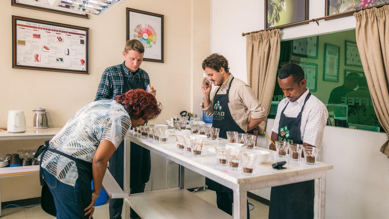 sgc-cupping-ethiopia-web