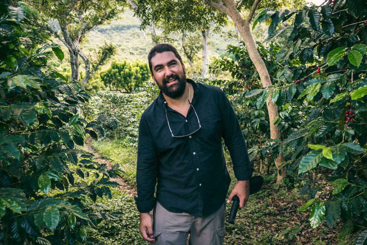 'Shade Grown Coffee' Movie Sheds Beautiful New Light on Sustainable Production