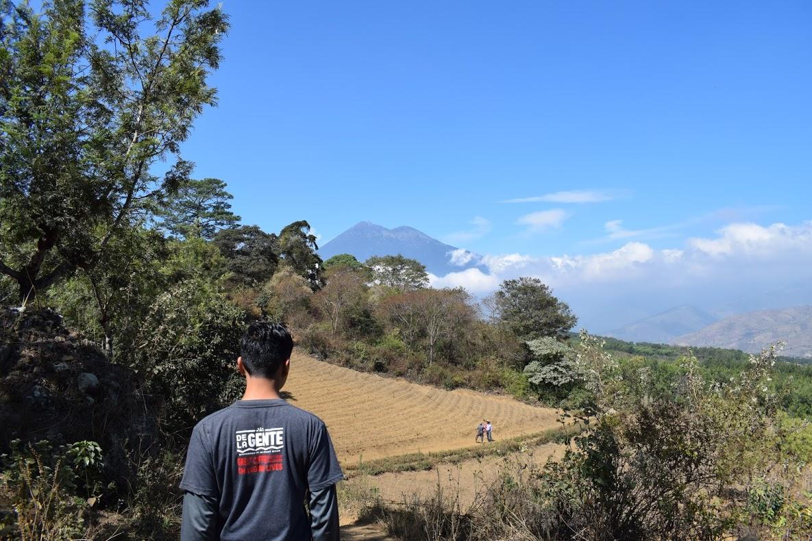5. visitando-cafe-fazenda-com-de-la-gente