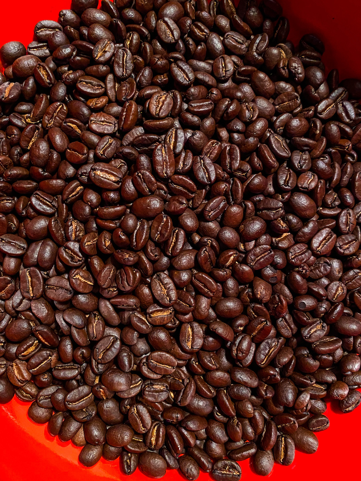 Hawthorne Hill Coffee 2