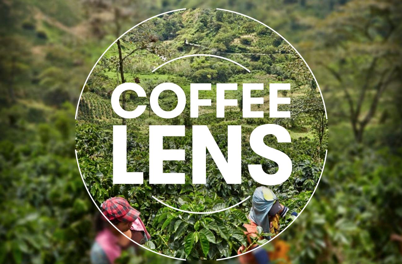Olam Coffee LENS