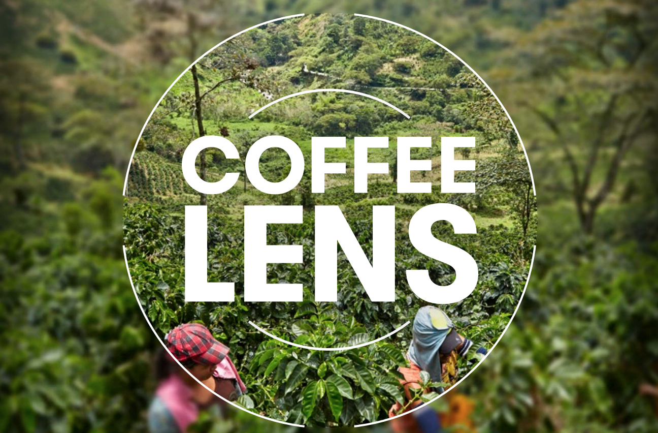 Olam Coffee LENS