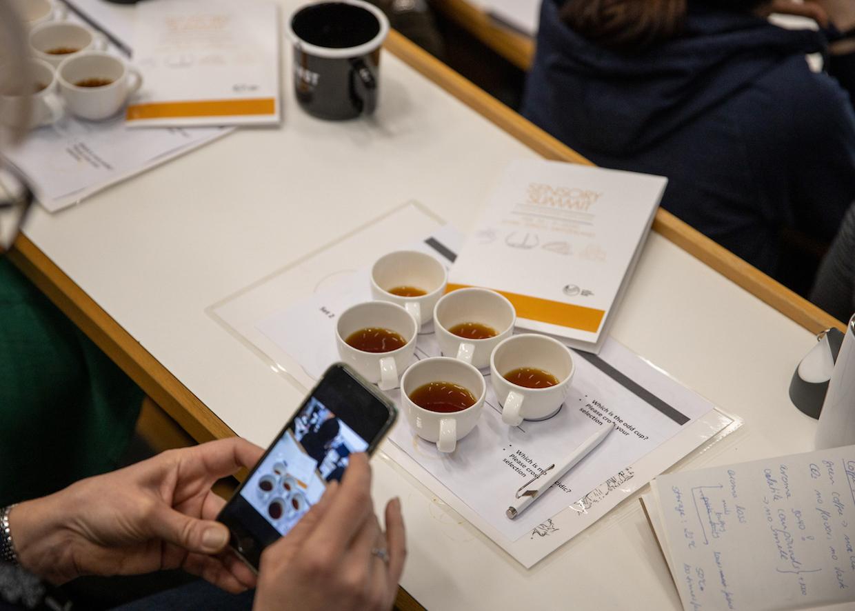 Sensory Summit for Coffee
