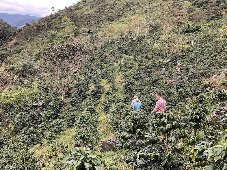 Ecuador-2