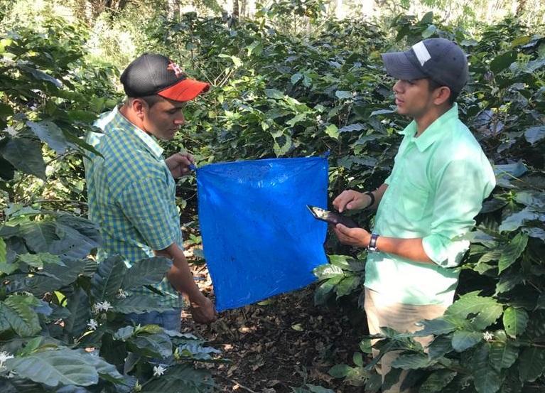 coffee pesticide initiative