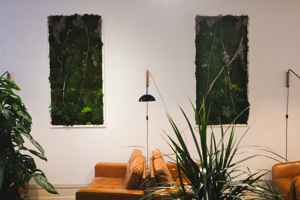 moss wall with couches