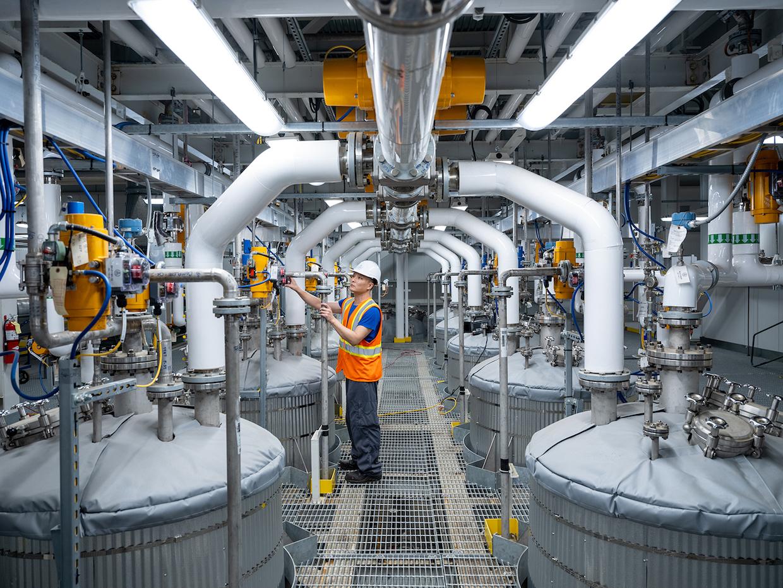 swiss water factory