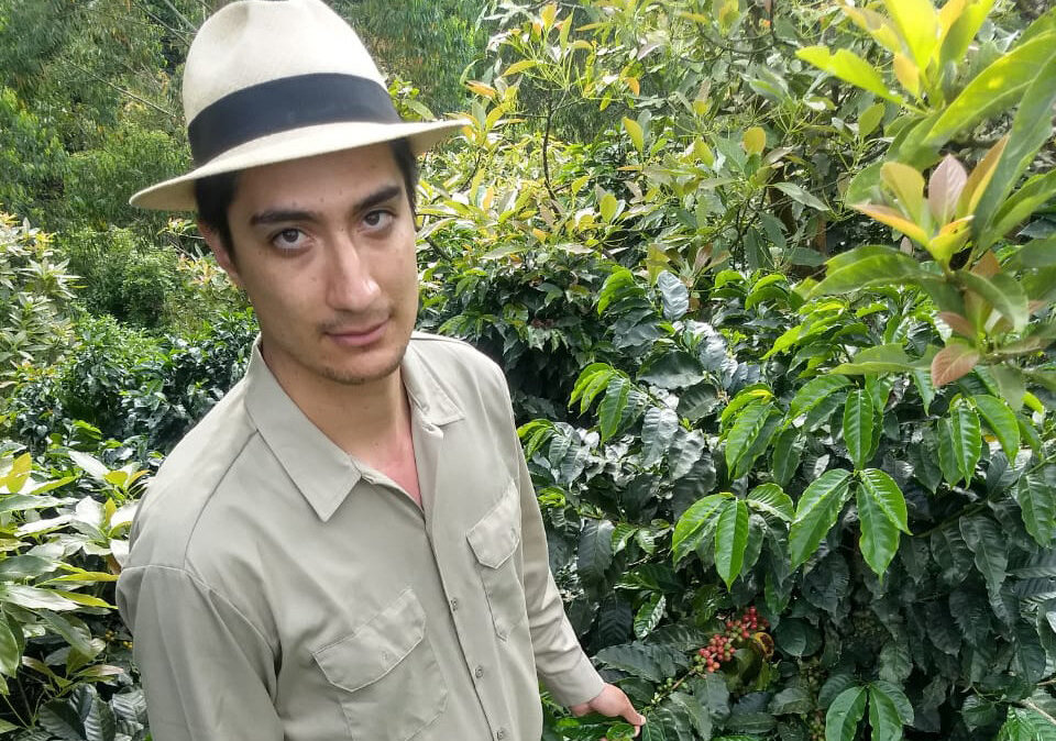 climate change colombian coffee