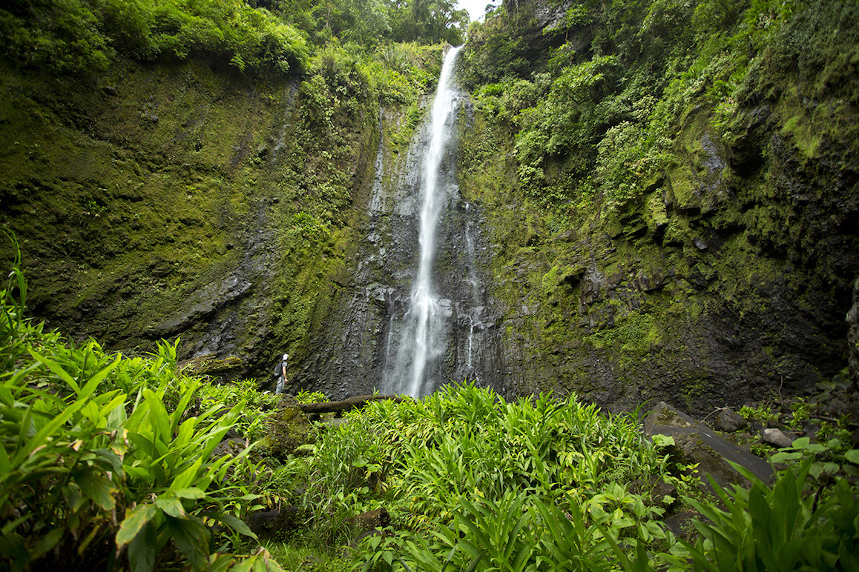 AquiaresEstate_Waterfall
