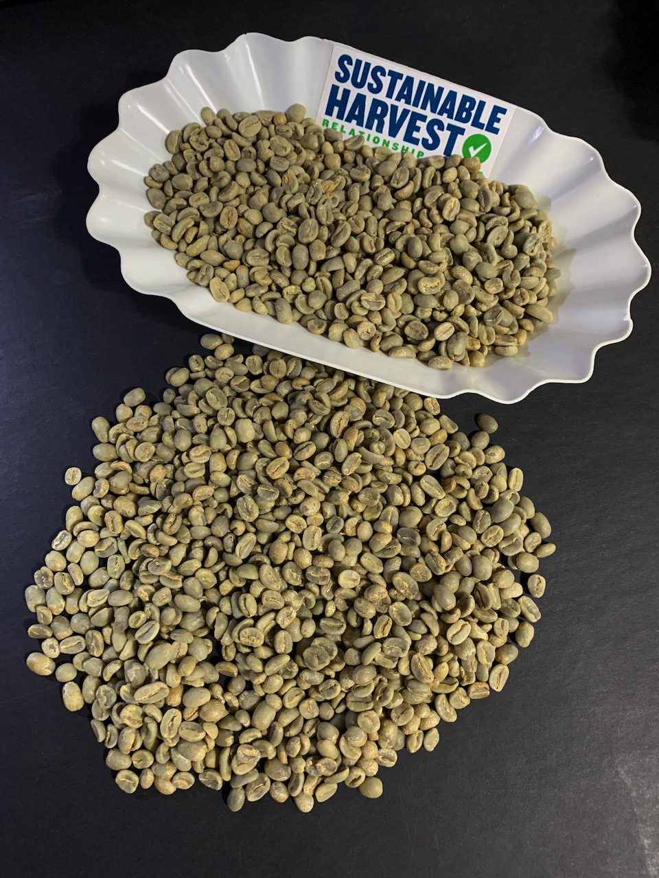 Green coffee cupping tray