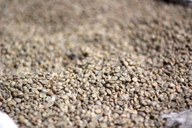 生咖啡中的水分活度