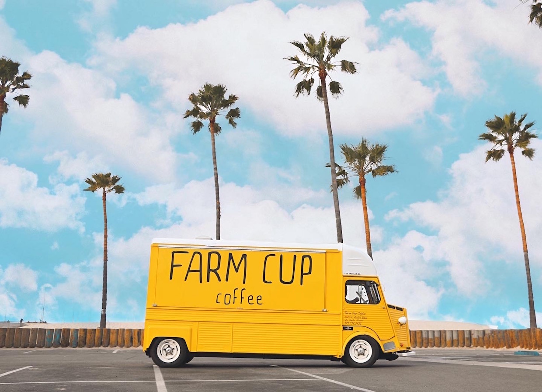 Farm Cup Sunny