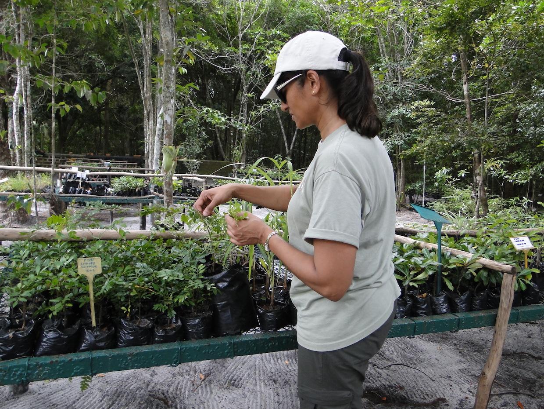 Madagascar – field work 2013