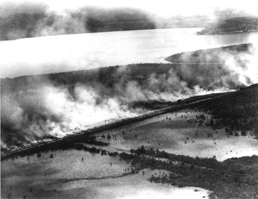 Foto antigua de café quemado en los manglares del pueblo de Santos.
