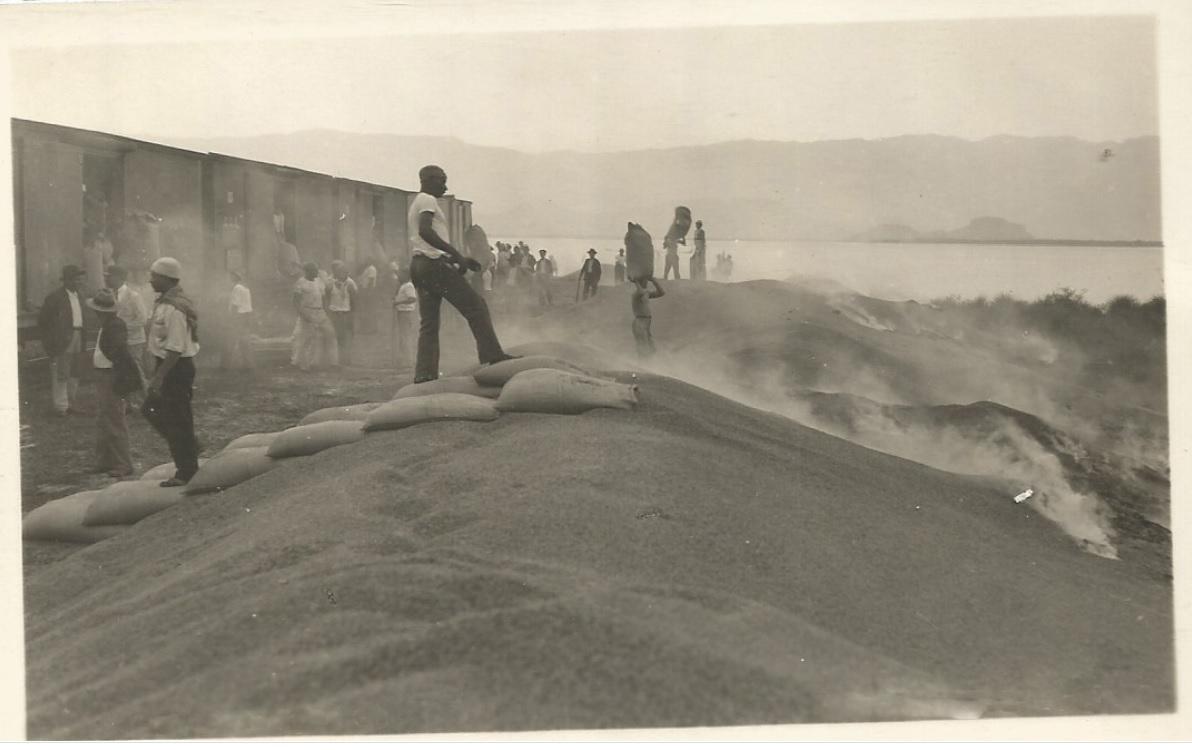 Postal antigua de los años 30 1 - Se descarga café de los trenes y se quema en el puerto de Santos.