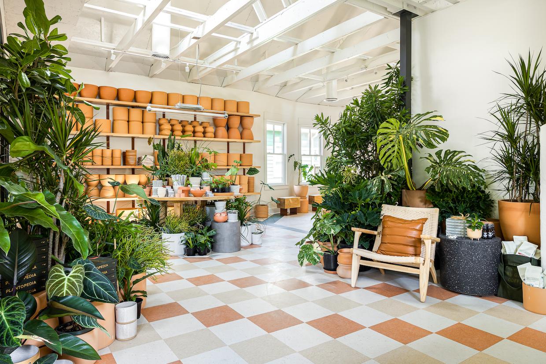 plant shop cafe