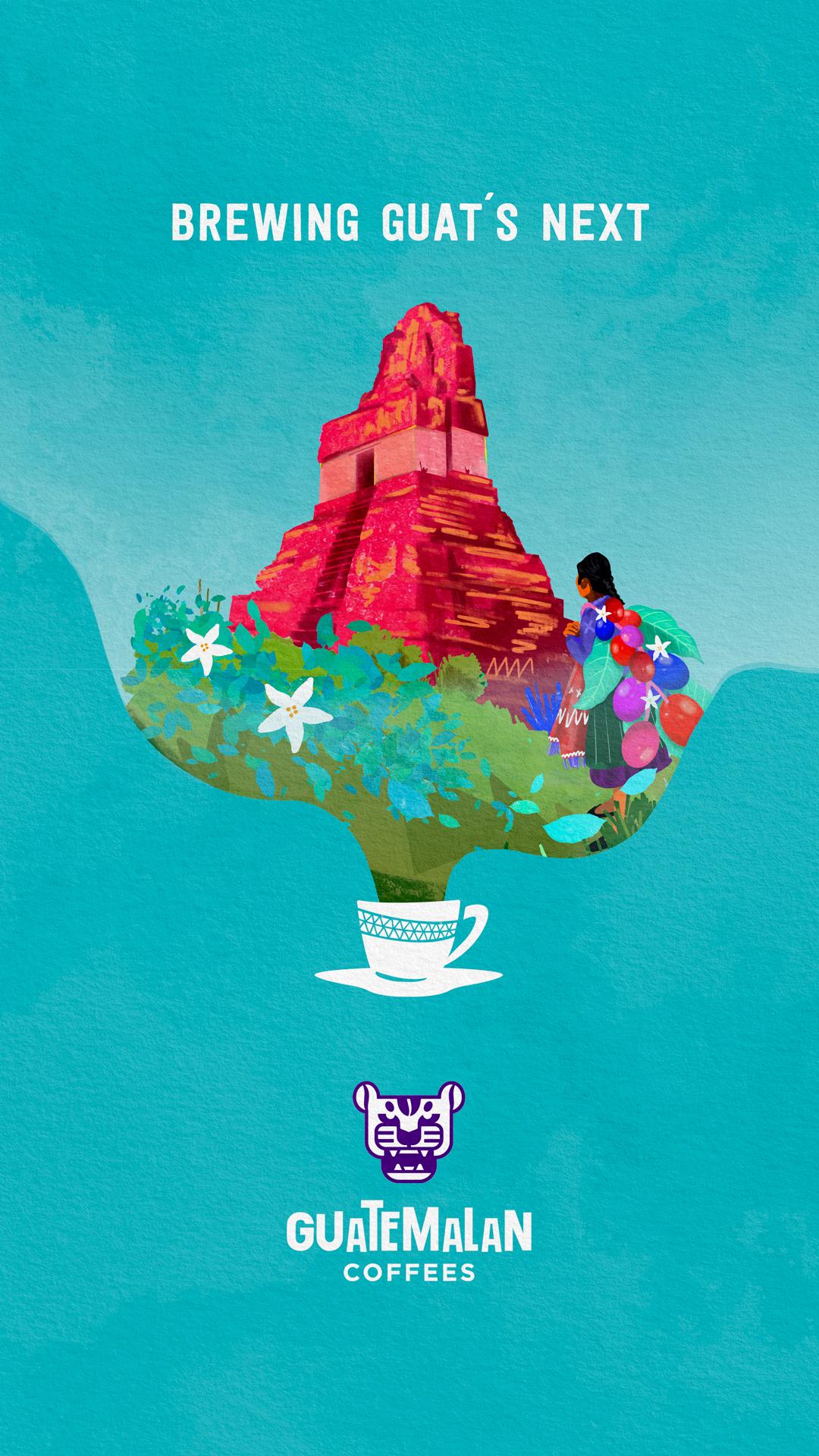 Cafés Guatémaltèques Pieza 4